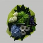 Blauw Hortencia 2 (Medium)