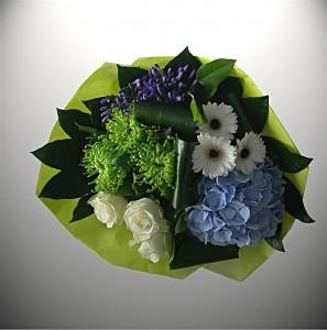 Blauw Hortencia 3