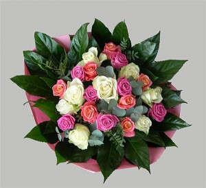 roze wit rosen1 (Medium)