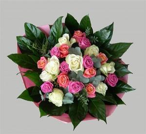 roze wit rosen1 (Medium)